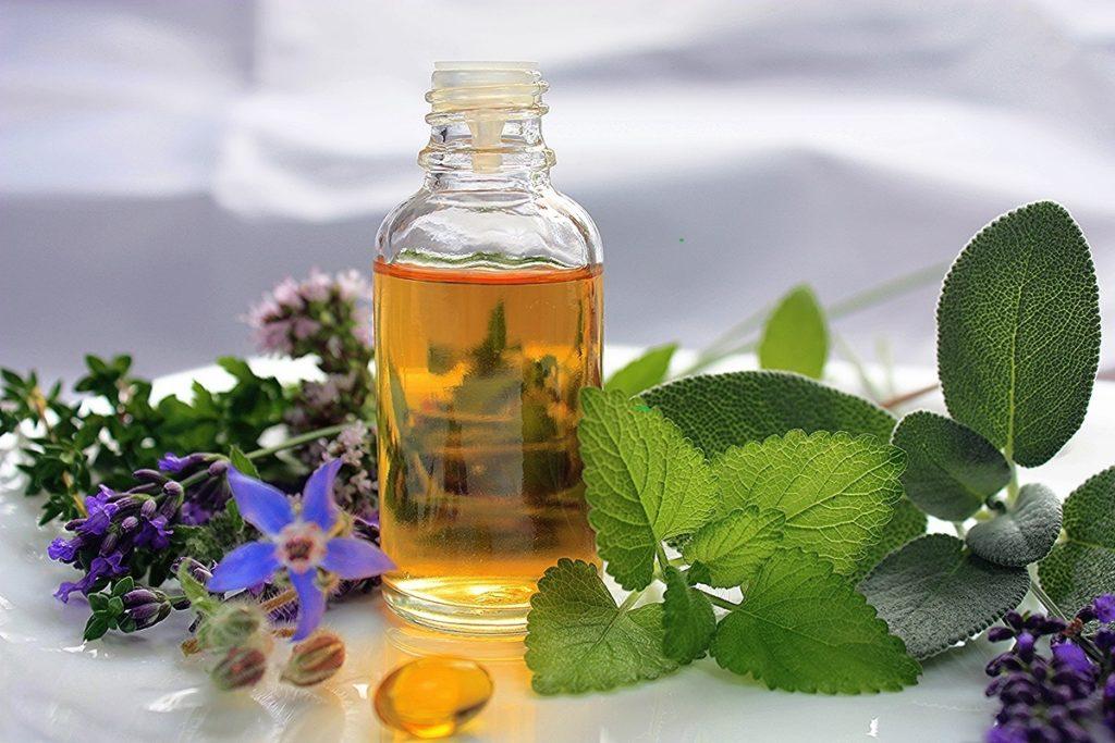 Natur und ihre Kräfte - Hilfe bei Allergien